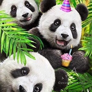Wishing You the Happiest Birthday Ever!