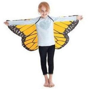 Or Mon Butterfly Wings