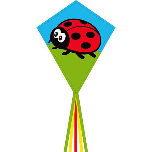"Eddy Ladybug 28"""