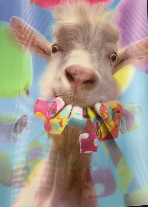 Goat With Party