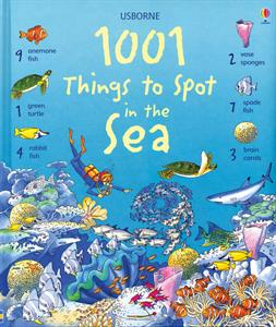 Things to Spot In The Sea