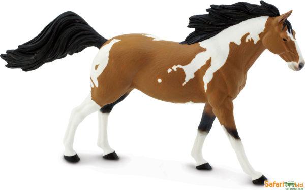 Pinto Mustang Stallion