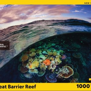Great Barrier Reef Puzzle