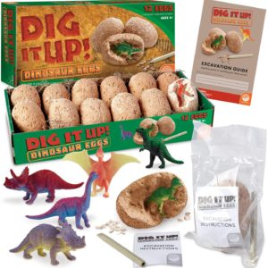 Dig It Up Dinosaur Excavation Kit