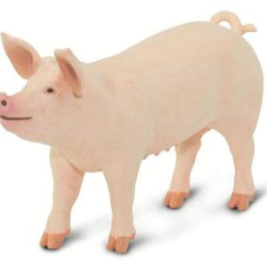 Safari Large Pig